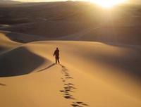 縱橫 356期 - 生命重塑的旅程,走出曠野路