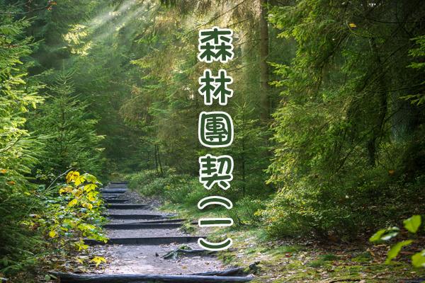 森林團契(一)